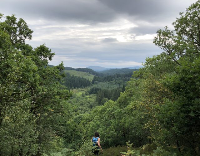 1 Day Stirling and Trossachs National Park